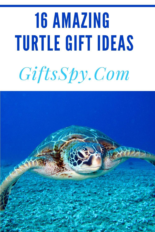 Turtle Gift Ideas